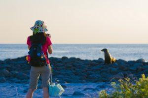 land based galapagos tour